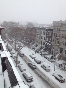 Our street in Crown Heights, Brooklyn during what was supposed to be a blizzard.